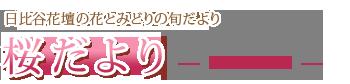 logo_sakuradayori